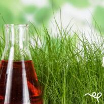 Biostimolanti e Bioattivati